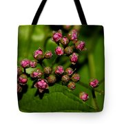 Wild Flower Blossoms 2 Tote Bag