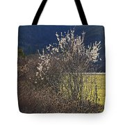 Wild Fruit Tree In The Country Tote Bag