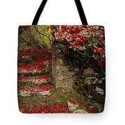 Wild Garden, Rowallane Garden, Co Down Tote Bag