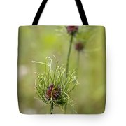 Wild Garlic - Allium Vineale Tote Bag