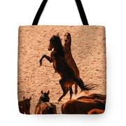 Wild Hooves Tote Bag