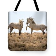 Wild Horse Disagreement  Tote Bag