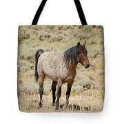 Wild Horses Wyoming - The Mare Tote Bag