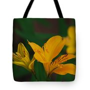 Wild Lilies Tote Bag