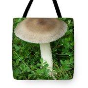 Wild Mushroom Tote Bag