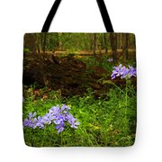 Wild Phlox In The Woodlands Tote Bag