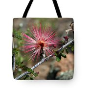 Wild Pink Fairy Duster Tote Bag