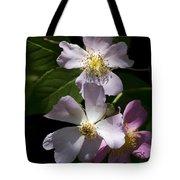 Wild Pink Rambling Rose Tote Bag
