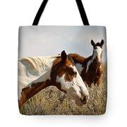 Wild Pintos Tote Bag
