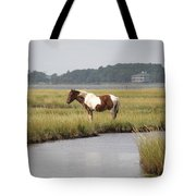 Wild Pony In The Marsh On Assateague Island Md Tote Bag