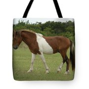 Wild Pony On Assateague Island Maryland Tote Bag