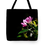 Wild Rose Along Galls Creek Tote Bag