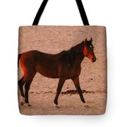 Wild Stallion Tote Bag