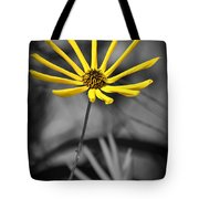 Wild Swamp Daisy Tote Bag