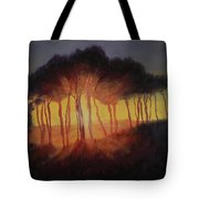 Wild Trees At Sunset Tote Bag