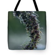 Wildflower Dew Covered Tote Bag