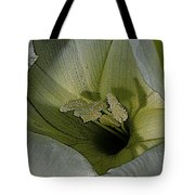 Wildflower Window Tote Bag