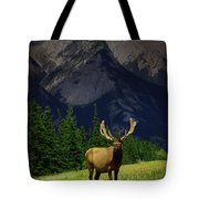 Wildlife In The Mountains Tote Bag