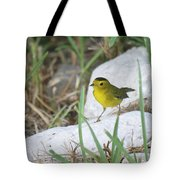 Wilsons Warbler By The Stream Tote Bag