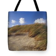 Wind Blown Grass Tussocks Precariously Tote Bag