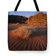 Wind Makes Waves In The Sand Tote Bag