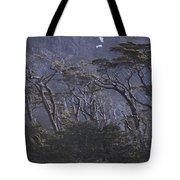 Wind-sculpted Southern Beech Forest Tote Bag