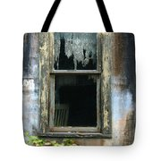 Window In Old Wall Tote Bag by Jill Battaglia