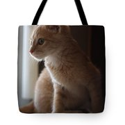 Window Light Tote Bag