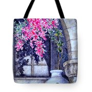 Window Shadow In Athens Greece Tote Bag
