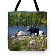Window To The Moose Tote Bag