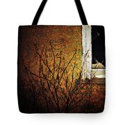 Windows Wink  Tote Bag
