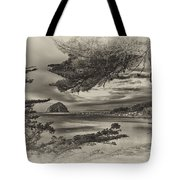 Windy Cove Bw Tote Bag