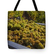 Wine Harvest Tote Bag by Garry Gay