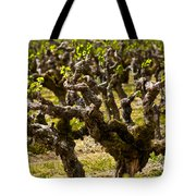 Wine On The Vine Tote Bag