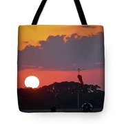 Wings At Rest Under The Sunset Tote Bag