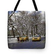 Winter - 2011 Tote Bag