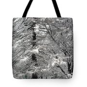 Winter 0001 Tote Bag