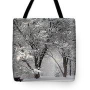 Winter 0002 Tote Bag
