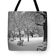 Winter 0004 Tote Bag