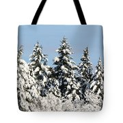 Winter 0005 Tote Bag