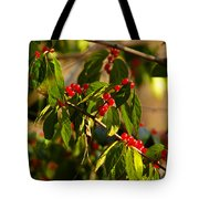 Winter Bird Treet Tote Bag