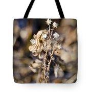 Winter Blossom Fairy Tote Bag