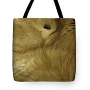 Winter Coat Tote Bag