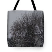 Winter Cold Branches Tote Bag