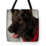 Winter Dog Tote Bag