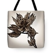 Winter Dormant Rose Of Sharon - S Tote Bag
