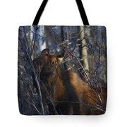 Winter Food Tote Bag