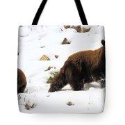 Winter Guide Tote Bag