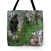 Winter Hide Away Tote Bag