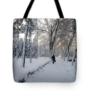 Winter In Mako Tote Bag